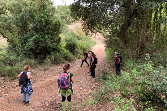 escursioni guidate per tutti